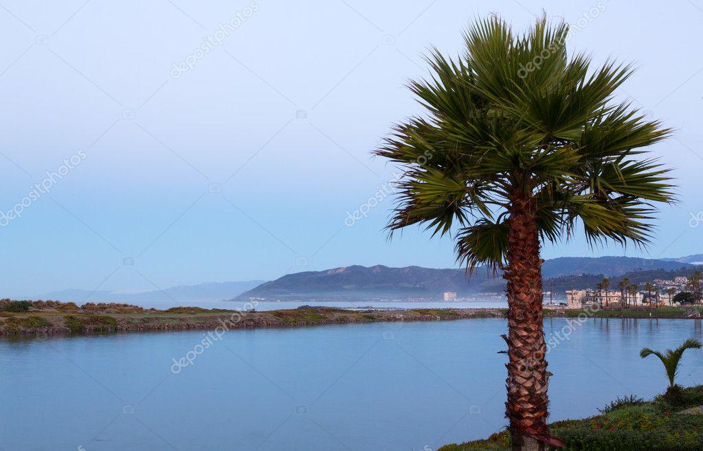 amanecer en ventura california con Palma — Fotos de Stock ...