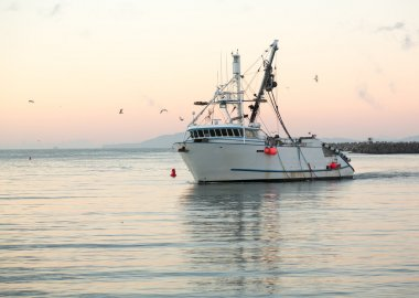 Fishing boat entering Ventura harbor dawn