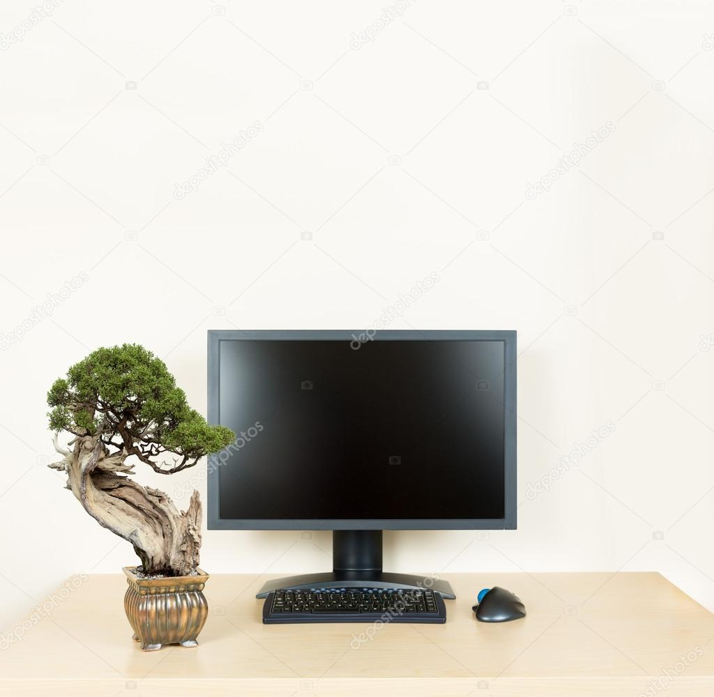 Small Bonsai Tree On Plain Office Desk With Monitor Stock Photo C Steveheap 49380447