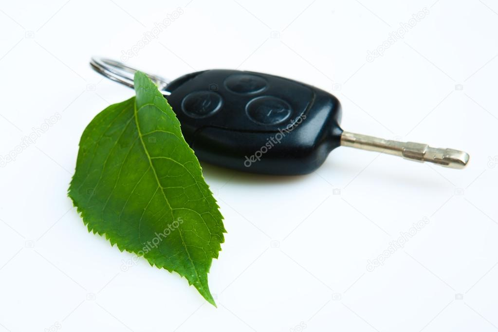 Car key with green leaf.
