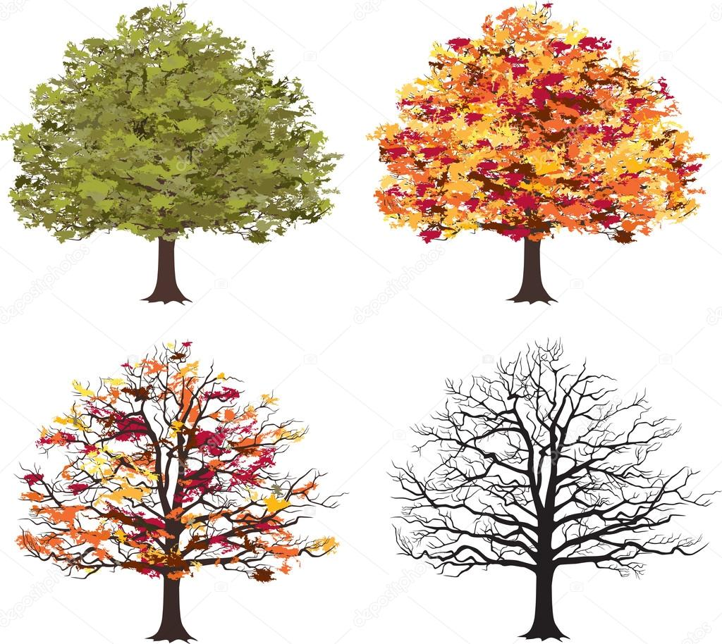 Different seasons of art tree. Vector