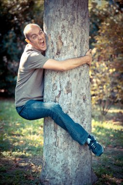 Funny Man Clinging to a Tree
