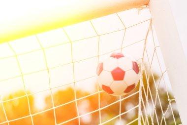 Soccer Ball into the Net