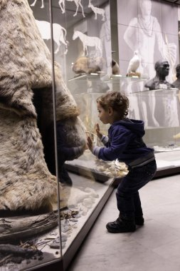 Child visiting historical museum