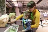 Fotografie rodina dotýká lebek zvířat