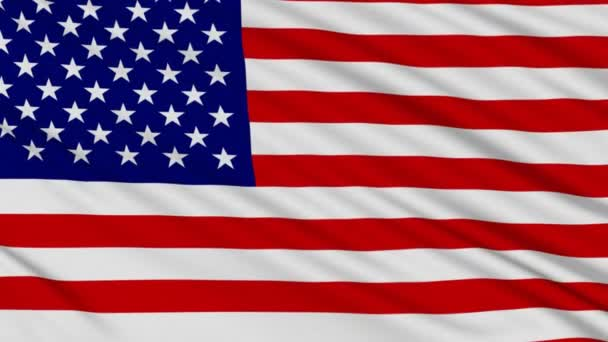 American Flag, with real structure of a fabric