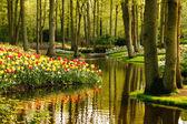 jarní zahrada