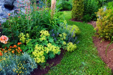 Lush blooming summer garden with path