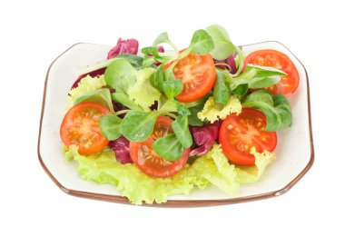 Fresh vegetable salad isolated on white stock vector