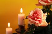 Fotografie Rose und Kerzen