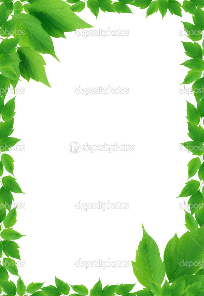 Marco de hojas verde fotos de stock kvkirillov 25745895 - Marcos para plantas ...