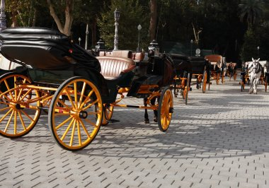 Carriage Parking