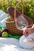 Piknik v slunečný letní den