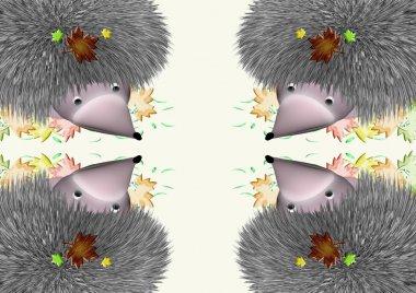 Four hedgehogs