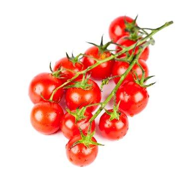 fresh organic cherry tomatoes