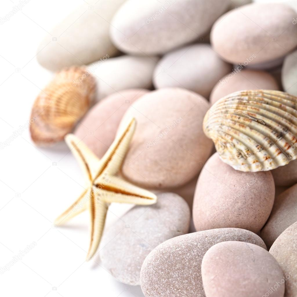 pile of stones, shells and sea star