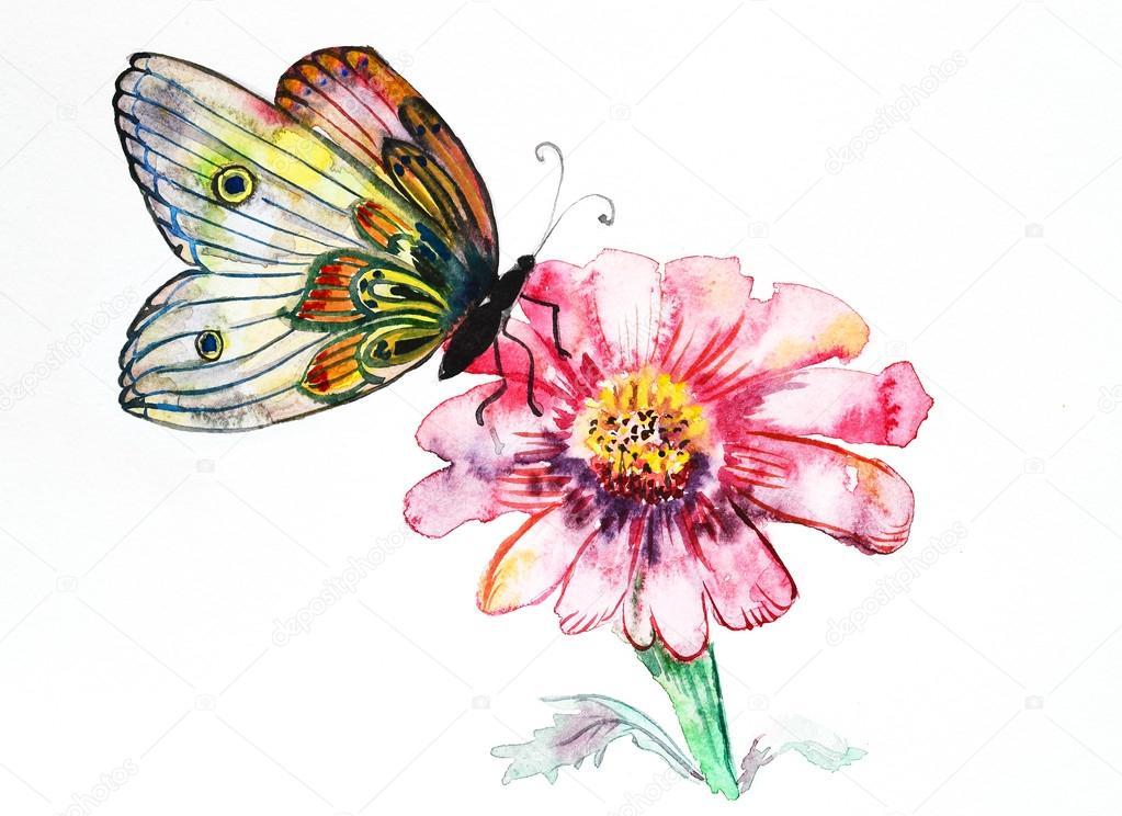 Бабочки картинки графика