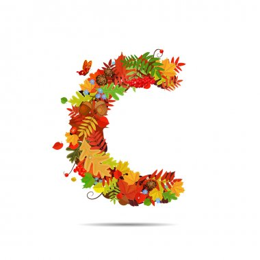 Letter from autumn colorful leaves C