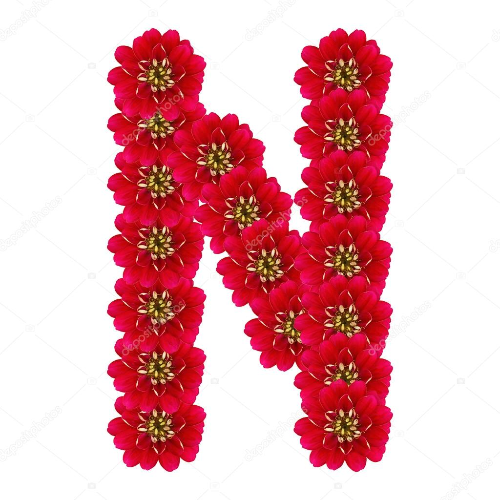 Letter N Flowers Stock Images RoyaltyFree Images