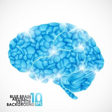 Human brain, cold mind