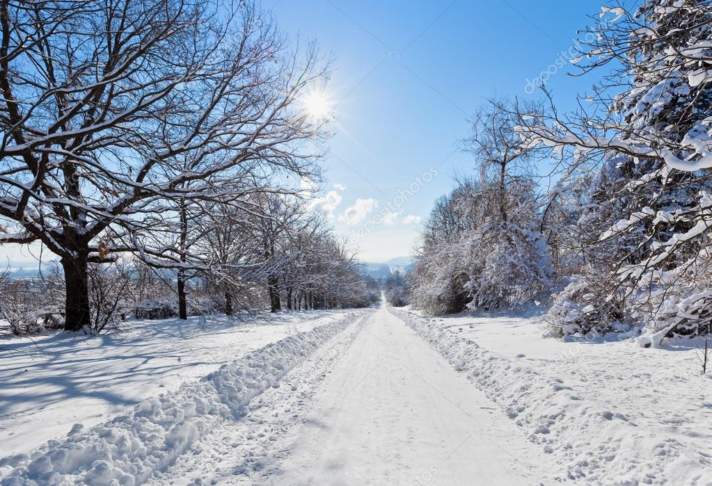 Winter road landscape with snow covered trees and bright sun, wi