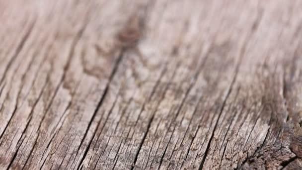 sfondo vintage di vecchia tavola di legno