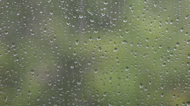 kapky deště okna