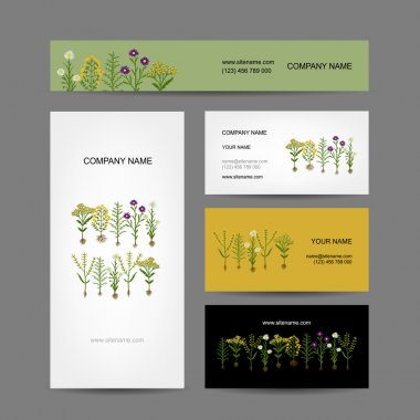 Business cards collection design, herbarium plants