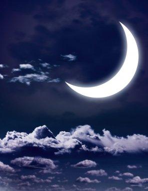 Night fairy tale