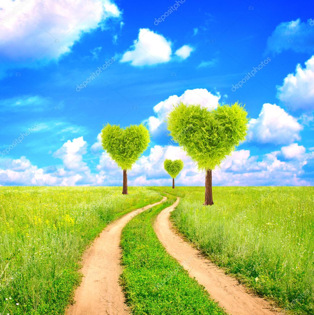Heart shape trees
