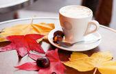 šálek kávy a pečených kaštanů