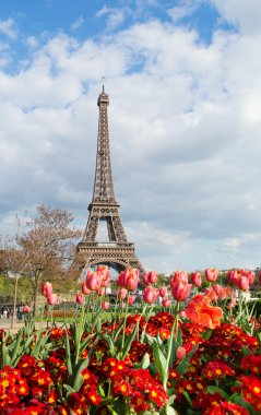 View of the Eiffel tower with beautiful tulips