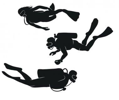 Vector divers
