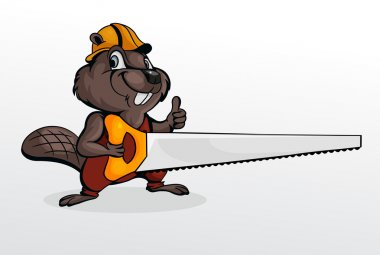 Beaver holding chainsaw