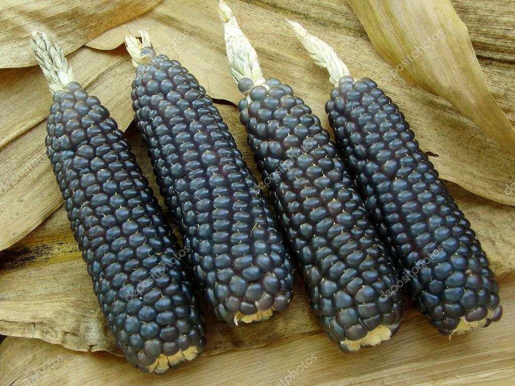 Mini blue corn