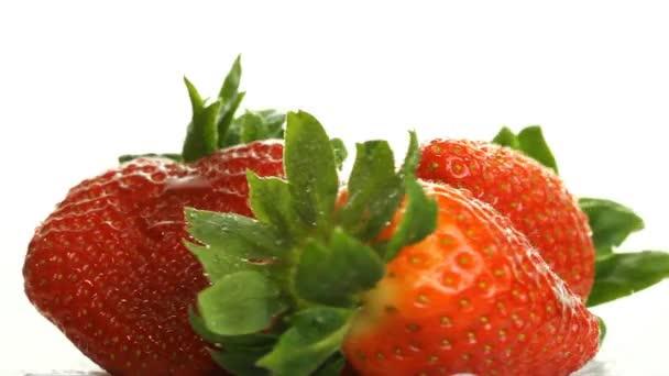jahody na bílém pozadí