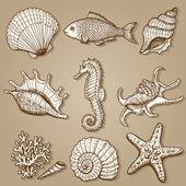Fotografie kolekce moře. Původní ručně kreslenou ilustrace