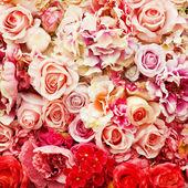 Photo Rose background