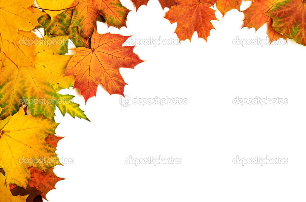 Herbst Blätter Rahmen — Stockfoto © Roxana #36943993