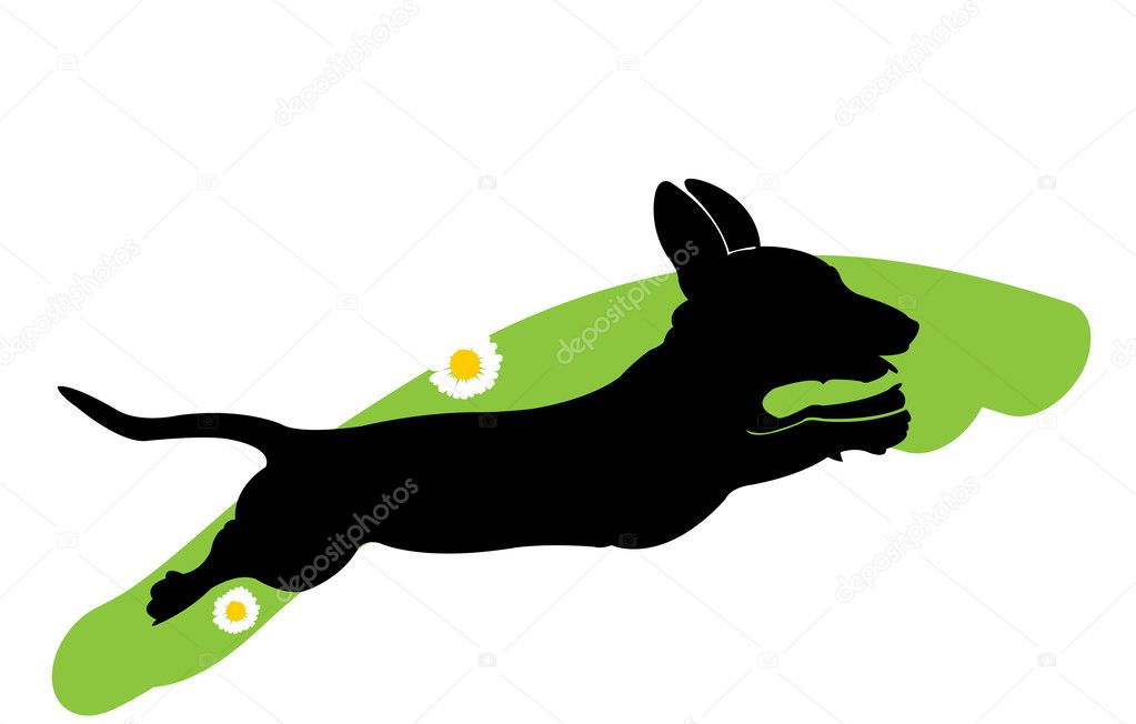 Vector silhouette of running dog