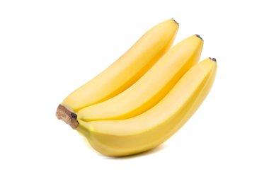 Close-up of three sweet bananas