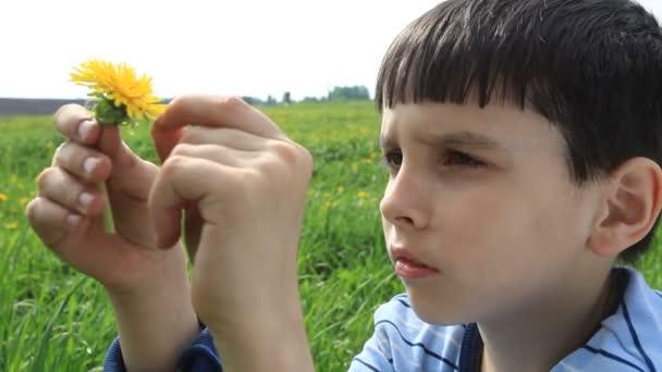 chlapec hospodářství květů pampelišky
