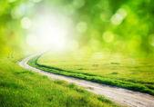 Cesta k Bohu