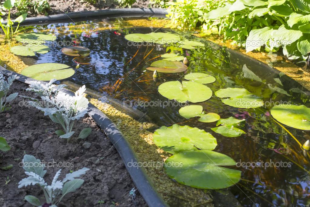 jardn de fragmento con un estanque artificial Foto de stock