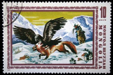 MONGOLIA - CIRCA 1975: A stamp printed in Mongolia shows cleavage at the forefront of attacking a red fox, a hunter in the middle ground, leaping on his horse, mountains in the background, circa 1975