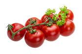 rajče větev s petrželkou