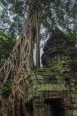 Photo Angkor Wat complex