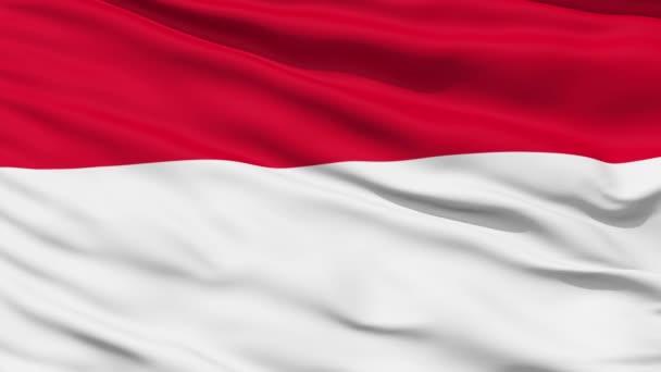 Online indonésie zdarma