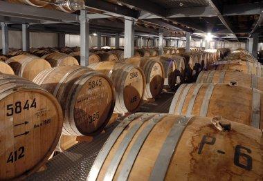 Rows of wooden cognac barrels in cellar stock vector