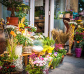 Photo flower shop